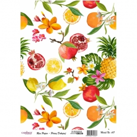 FRUIT RICE PAPER